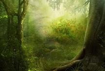 my fantasy world / by Jackie Reeder