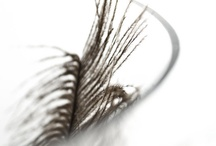 Feather fetish