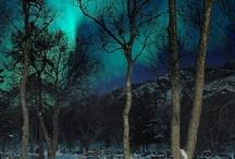 Nordlys/Northern Lights/Aurora Borealis / Aurora Borealis