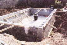 bio pool project