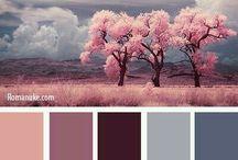 barevné kombinace