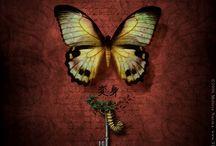 Metamorphosis-Alive with Wings!