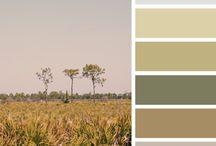 컬러 팔레트 (Color Palette)