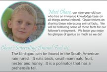 Chase's Animal Facts / Chase shares his immense knowledge-base of all things animal related.