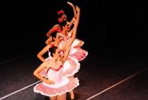 """Presenta Ayuntamiento el libro """"Ballet Clásico, Origen e Historia en la Ciudad de Veracruz"""" / Más información en: http://www.turismoenveracruz.mx/2012/04/presenta-ayuntamiento-el-libro-ballet-clasico-origen-e-historia-en-la-ciudad-de-veracruz/"""