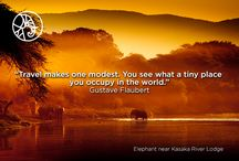 Travel Quote Of The Week / Inspirational Africa Safari quotes every week.