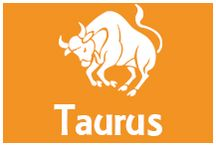 All about Taurus / Follow our board to get Daily, Weekly, Monthly, Yearly predictions about Taurus.