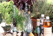 ☪The Green Witch's Herb Garden & Apothecary☪ / A Hedge Witch is a solitary practitioner of the herbal arts - both, medicinal and spiritual. Her cupboard contains the remedy for what ails you - physical and spiritual. A Hedge Witch does not belong to a coven. She does not follow the tenets of any sect or organized religion. Her craft is her own - usually handed down to her by family and honed by her own experience and research. / by Angel