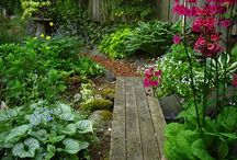 Pathways, Paths and Garden Trails / From here to there and back again