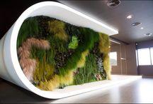 roślinne ściany