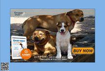 Pet & animal care