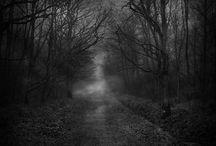 dark forests