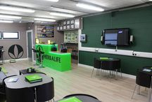 Herbalife Office