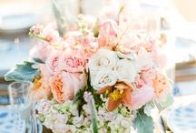 Wedding Flowers / by Stephanie Skene