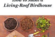 Birdhouses, Plant Stands & Coat Rackets