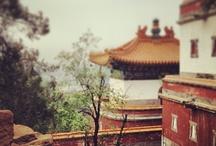 Beijing / by Jo-Ann Pullen