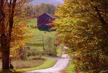 country living / by Gale DeAngelis