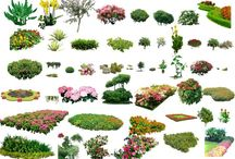 PSD Landscape design