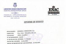 Sobre nosotros / Información general sobre la empresa, descargas...