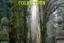 The Consequences Collection / The Consequences Collection is an eclectic compilation of twelve stories ranging from non-fiction through creative non-fiction to pure fiction, in prose and poetry.  Some of these stories are lighter than others, and some might even beg you to leave the lights on.