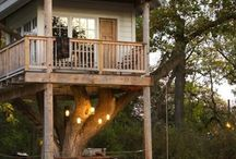 Tree House Inspiration (Arsitecture)