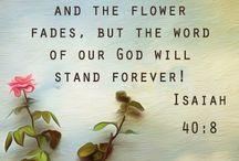 HALLELUJAH / JEZUS IS DE WEG DE WAARHEID EN HET LEVEN