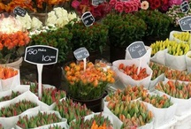 Flower Markets and Shoppes