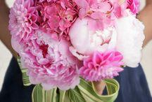 Про цветы...