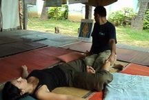 Thai Massage Videos / Thai Massage Training Videos for our students to practice and refresh their skills with #Yoga #MassageCourses #MassageTrainings