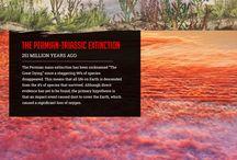 Biodiversity + extinction