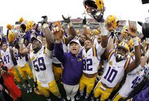 2014 Game Day Highlights / The 2014 Outback Bowl featured LSU and Iowa in another exciting game decided in the final two minutes. / by Outback Bowl