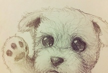 cute animal drawings / by laly rodriguez
