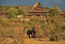 Victoria Falls Safari Lodge - Zimbabwe / Set high on a plateau which forms a natural boundary to the Zambezi National Park, Victoria Falls Safari Lodge enjoys uninterrupted views of unspoilt bushveld, spectacular African sunsets and an on-site waterhole. http://zimbabwebookers.com/