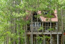Cabins and Tree houses