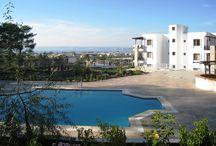 Ferienwohnungen an der Türkischen Mittelmeerküste / Ausgewählte Apartments und Wohnungen an der Türkischen Ägäisküste - für Urlaub und Daueraufenthalt