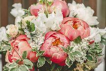 ποθητη λουλουδια