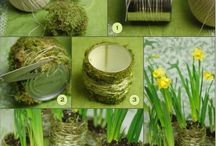 Flowers / Lovely flowers and ideas for decor, gardening....