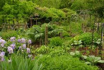 Pretty Permaculture