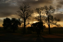 My Photos From Benbrook Lake Camping Trip 2011 / by Teri Hankins