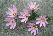 Bez çiçek