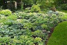 My Gardening Style