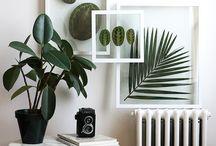 Deco plant vert