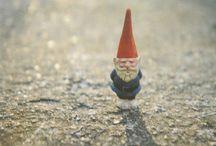 Save the Garden Gnomes!