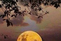 Noapte cu lună!