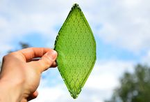 Artificial Leaf /  An artificial leaf converts water and light to oxygen, and that's good news for road-tripping to places beyond Earth.www.cnet.com/.../this-man-made-breathing-leaf-is-an-oxygen-factory-fo