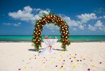 Свадебные арки. / Свадебные арки, свадебная арка оформление, украшение свадебной арки, свадебный дизайн,