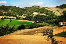 Paesaggi Piceni