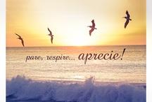 Vida e felicidade
