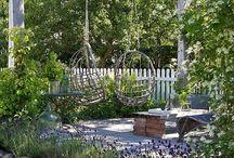Toekomstige tuin