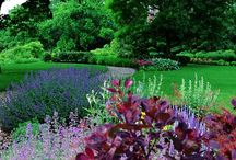 Garden Design / Various landscape designs